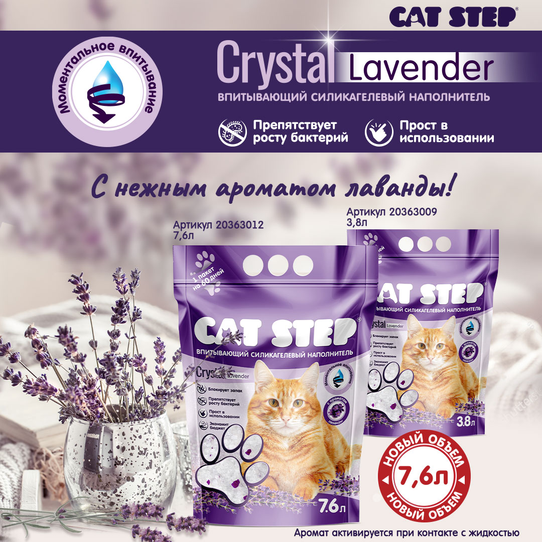 НОВИНКА! CAT STEP Crystal Lavender